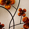 Daily Shoot Assignment No. 597 7/5/11: Make a photo of a regular or irregular pattern.