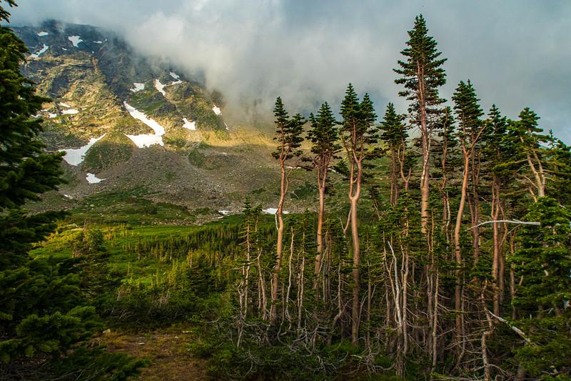Roosevelt NF - Indian Peaks