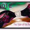 01.02.12<br /> <br /> The Bras are back!
