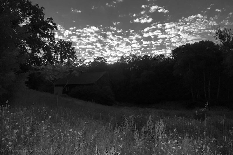 2016-06-18: at 5:50AM the morning light doesn't quite reach the small barn yet.
