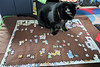 2016-12-25: jigsaw puzzles require a lot of concentration