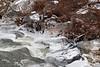 2016-12-20: Icy shoreline