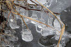 2016-12-17: Miniature ice sculptures by jack frost
