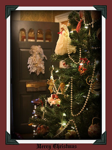Thank you everyone out there for a wonderful year of sharing your amazing work and parts of your life it's been a great time. Merry Christmas and have a great day.... This is a shot I captured on a holiday homes tour in a old vicyorian home.