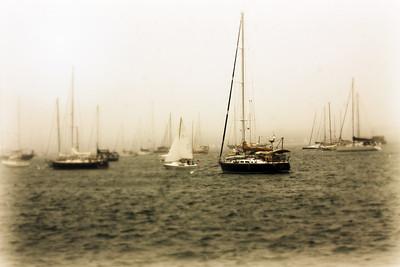 The harbor.