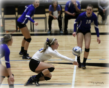 Horseheads Blue Raider Volleyballl