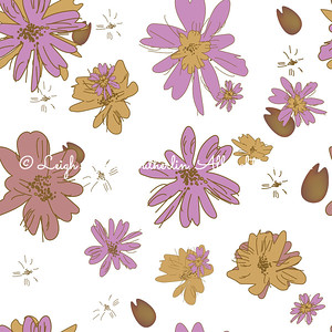 Daisies Collection