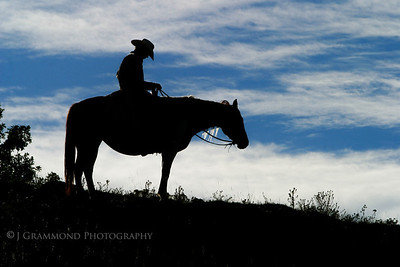 CowboyPortraits-3514