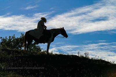 CowboyPortraits-3502