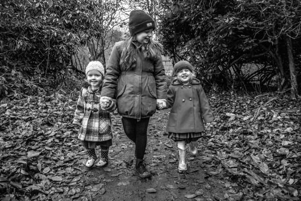 Dale Family Walk