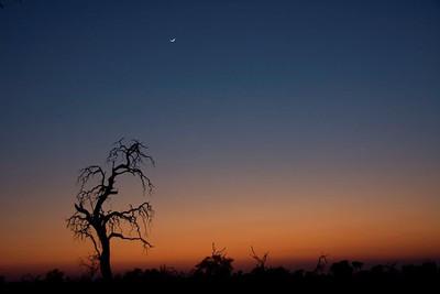 Sunrise, Duma Tau