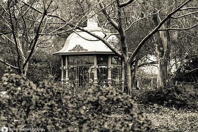 Arboretum-7403