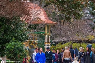 Arboretum-7452