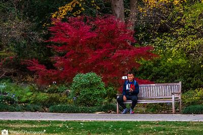Arboretum-7422