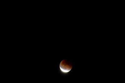 Blood Moon Over Rowlett
