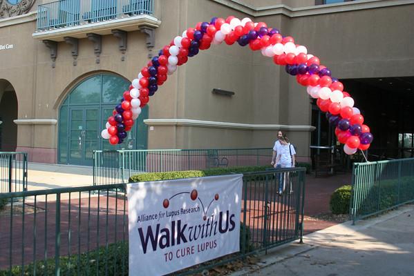 2008 Dallas Walk Photos
