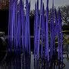 Chihuly '12 -  28