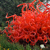 Chihuly '12 -  64