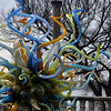Chihuly '12 -  118