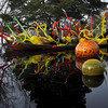 Chihuly '12 -  47