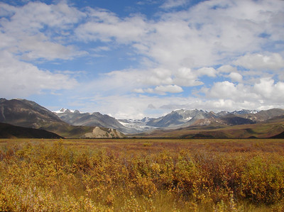 8/31/07 - The view looking up to the head of the valley, with the Gulkana Glacier in the center of the photo.