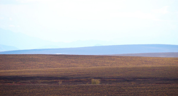 9/1/07 - It could be the rolling hills of eastern Montana, but it is the rolling tundra of the North Slope of the Brooks Range as the low, flat, Arctic Plain gives way to the mountains to the south.
