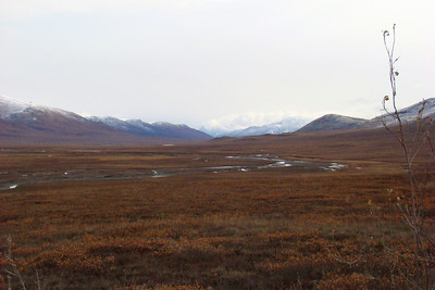 9/22/08  1:49PM - This is the Chandalar Shelf, with the West Fork of the North Fork of the Chandalar River flowing eastward through the broad valley to join the main channel of the Chandalar River, which ultimately flows into the Yukon far to the south.