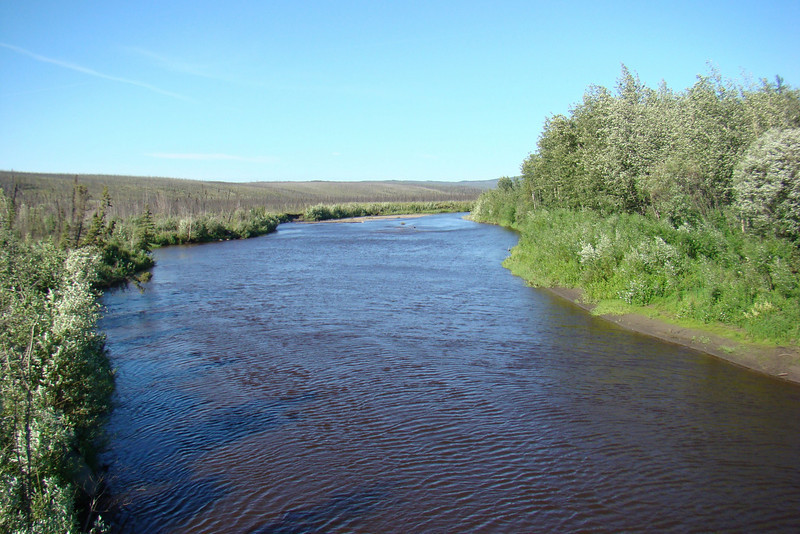 Downstream from the bridge, Hess Creek flows through a broad valley, and on this hot day, looks cool and inviting, despite its chocolate hue.