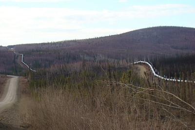This shot, taken near Mile 29.5, illustrates the sinuous routing of the pipeline through this rolling terrain.