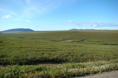 7/4/08 8:43PM - Just above the Kuparuk River, here just a small, clear stream that meanders across the tundra, with a culvert under the highway around Mile 289.
