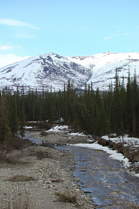 MP197 - Gold Creek carries the meltwater from these hills to the east of the highway.
