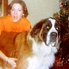 "Julie Yaden - 1976 (Dec) - Age 22 - With the family dog ""George"" - Mark & Betty Schreiner Home - Yakima, WA<br /> <br /> Dan's note:<br /> <br /> Ahh yes, George the Saint Bernard.....Thank God this dog loved Julie, because he never really thought much of me during the entire time we dated.  I think Bud Schreiner trained George to be forever suspicious of all teenage boys (which was pretty smart, in retrospect).  <br /> <br /> Indeed, the face to the right was the one I had to pass muster with each time I came calling on the face to the left.  As you turned off Ahtanum Road and started up the Schreiner drive, you could hear with increasing intensity the deep resonance of a very large bark.  Once at the top of the driveway, you first rolled down your window to speak a pathetic series of ""Nice Georgie, nice Georgie, it's just me Georgie, please don't eat me, Georgie!""<br /> <br /> George never ate me, but there were nights when I wasn't sure if this teenage boy would be allowed to pass or be torn to shreads and scattered about the yard for the magpies to pick at......."