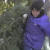 Video Archive Clip 2000 (Dec 3) - Yaden, Dan & Julie (both age 46) - Christmas tree(s) hunt - Red Feather Lakes, CO - Jake (age 16), Steven (age 12), Alex (age 10) - Mixed Relations Series (6 min 54 sec)