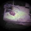 Matthew Joseph Yaden - 1981 (July 3) - Matthew in the nursery - Yakima Valley Memorial Hospital - Yakima, WA (Captured from 8mm film)