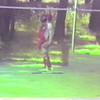 Video Archive Clip 1992 (6) - Yaden, Matthew J. - Matthew (Age 10) Plays Little League Baseball - Spanaway, WA - Mixed Relations Series - Edited in June 1992 (6 min 23 sec)