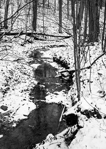 From the Lake Loop Trail, Hinckley Reservation, Christmas Eve Trail Run, 2009.