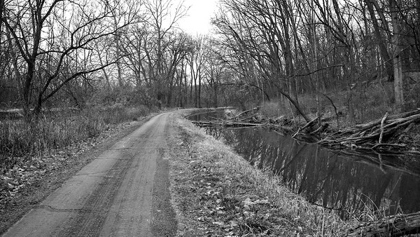 On the Towpath Looking North, CVNP, Towpath Trail Run, December 2009.