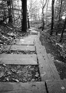 Steps on the Buckeye Trail, CVNP, Buckeye Trail Run, May 2012.