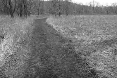 On the Stanford Trail Connector, CVNP, Spring Solstice Run, 2016.
