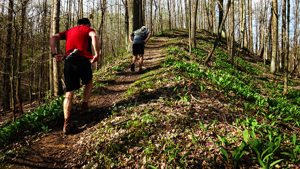 On the Buckeye Trail, CVNP, Cinco de Mayo Trail Run, 2018.