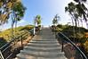 100 Plus steps from Lantern Bay Park to Dana Point Harbor.