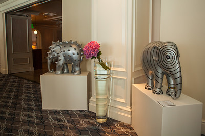20130925_DPElephants_0063T