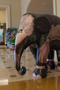 20130925_DPElephants_0007T