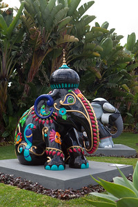 20130925_DPElephants_0032T