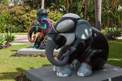 20130925_DPElephants_0036T