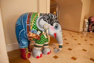 20130925_DPElephants_0013T