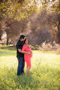 Dana Maternity-4
