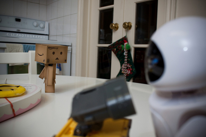 danbo: if only you knew...