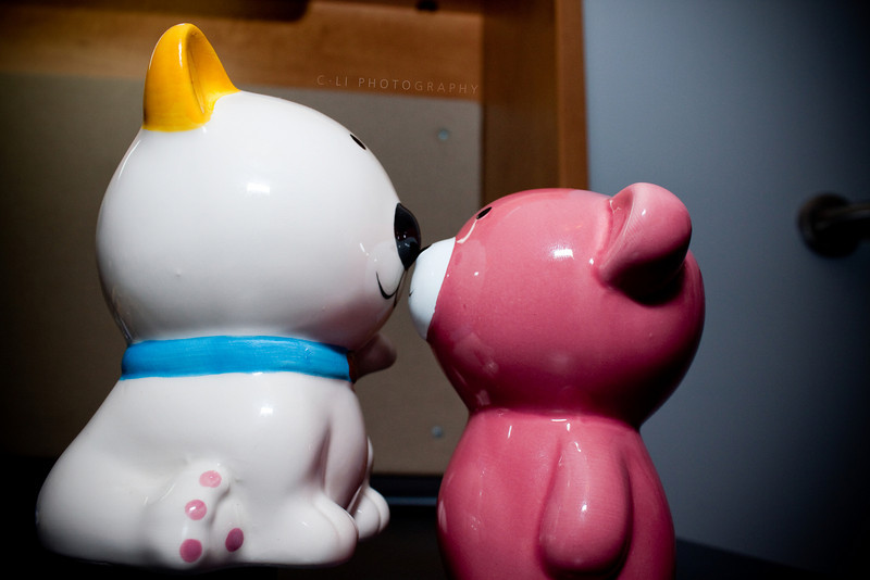 two piggy banks in love