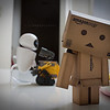 danbo: sigh... happy valentine's day...